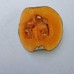 pumpkin piece